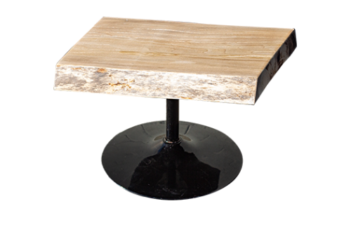 Sycamore Live Edge End Table with black aluminum stem and circular base